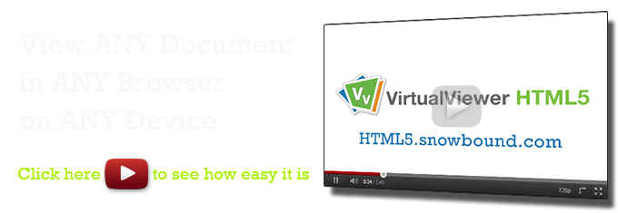 VirtualViewer HTML5 Video